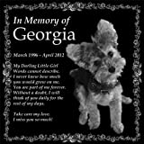 Personalized Pet Memorial 12''x12'' Engraved Black Granite Monument Headstone