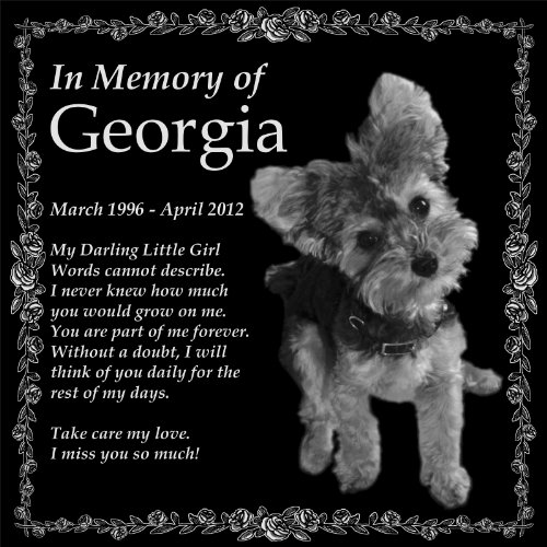Personalized Pet Memorial 12''x12'' Engraved Black Granite Monument Headstone by Lazzari Collections