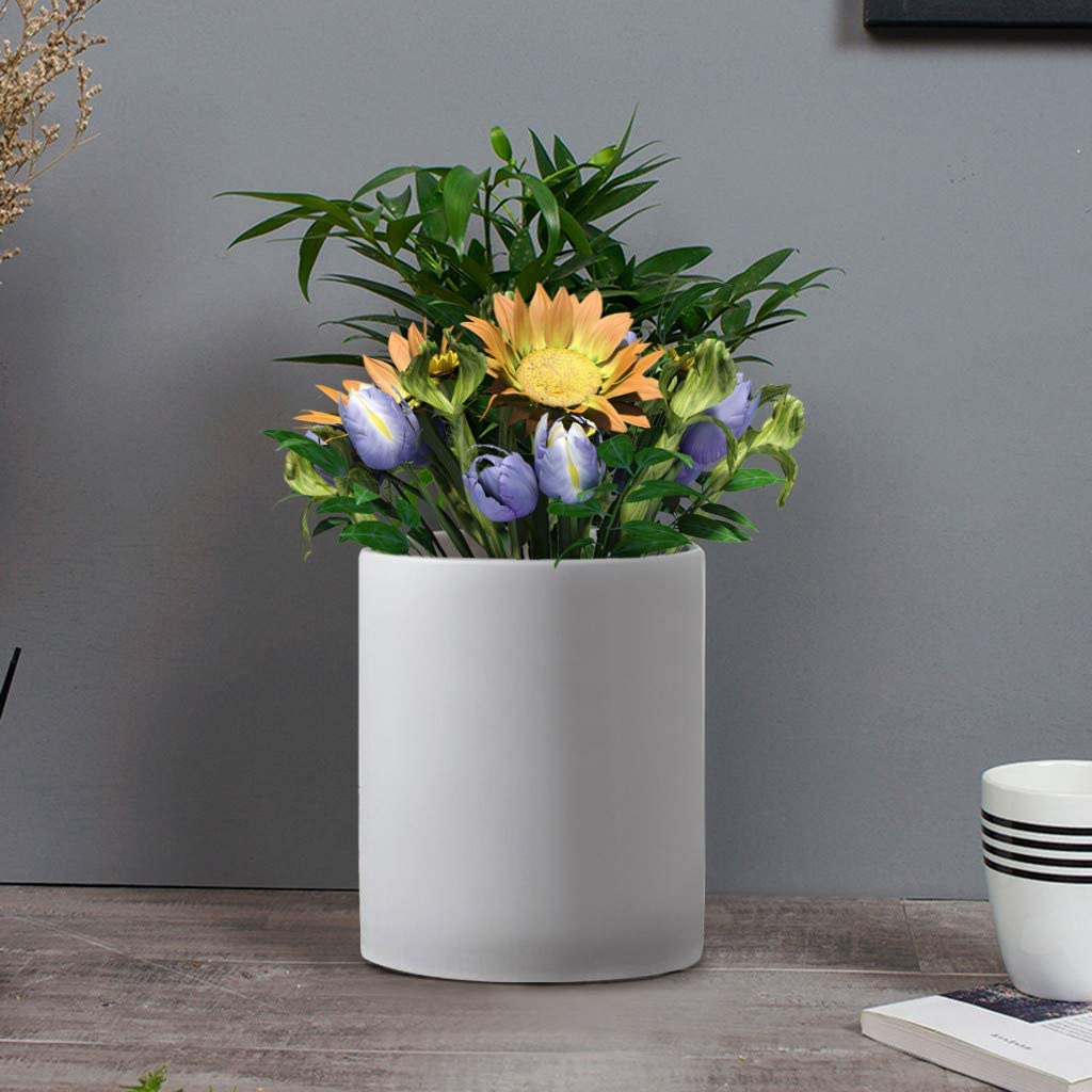 Shamoluotuo maceta de cerámica blanca para jardín, maceta de 10 ...