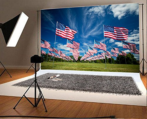 (Laeacco 8x6.5FT Vinyl Backdrop Photography Background North American Flags Grass Field Memorial Park July 4th Blue Sky Clouds Scenery Independence Day Wedding Holiday Party Video Shoot Studio)