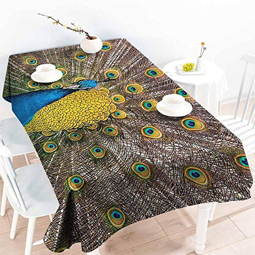 Homrkey Restaurant Tablecloth Peacock Decor Collection Peacock Displaying Feathers Golden Vibrant Colors Eye Shaped Picture Print Mustard Turquoise Peru Picnic W52 xL72 -