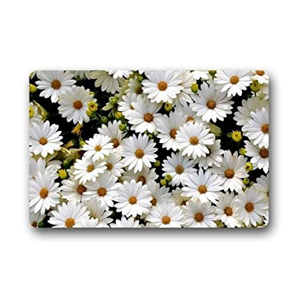 Hi,Doormat Custom Daisy Flower Kitchen Rugs Cover Non Slip Outdoor Indoor  Bathroom Kitchen