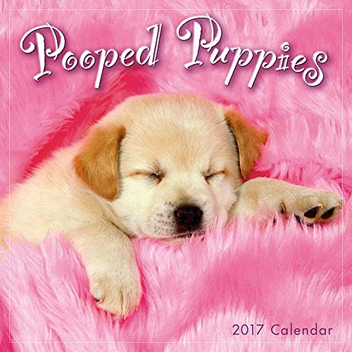 Pooped Puppies 2017 Small Calendar