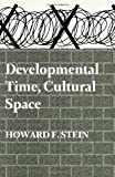 img - for Developmental Time, Cultural Space: Studies in Psychogeography (Second Edition) book / textbook / text book