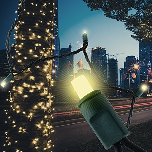 50 LED Bulbs Christmas Lights Plug In - AIDDOMM, LED Bulbs String Lights For Outdoor And Indoor, Party, Patio, Warm White, Green Wire, 25 Feet, UL Listed (Lights Christmas Bulb Fuse For)