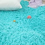 Softlife Soft Velvet Silk Area Rugs,Simple Style