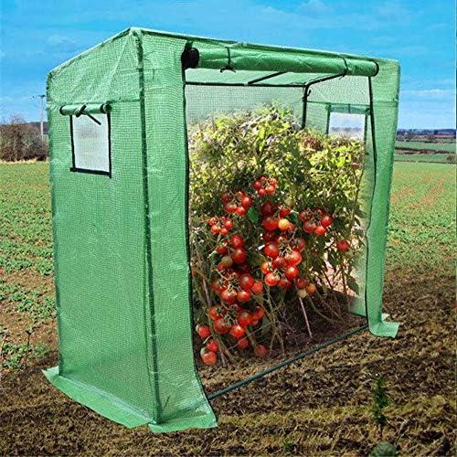 庭の温室 PEカバーとロールアップジッパードア付き、観察窓付き植物ホットハウス、トマト用