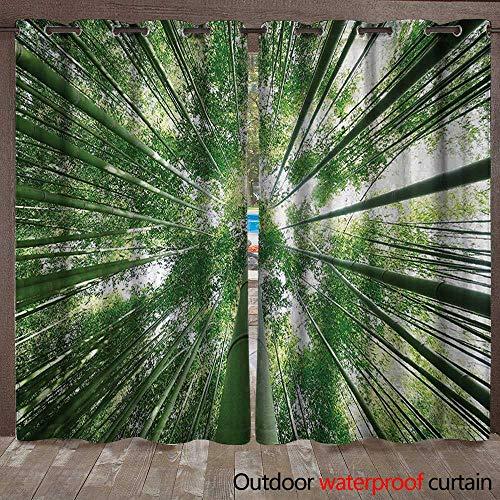 BlountDecor Bamboo Patio Gazebo Pergola Cabana Tropical Rain Forest Tall Bamboo Trees in Grove Exotic Asian Style Nature Zen Theme ImageW108 x L108 Green