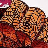 "Halloween Spider Web Wired Ribbon - 2 1/2"" x 10"