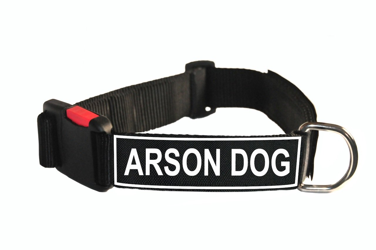 Dean & Tyler Nylon Patch Collar with Arson Dog Patches, Medium, Fits Neck 21 to 26-Inch