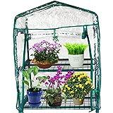 Kendal Garden Mini Greenhouse