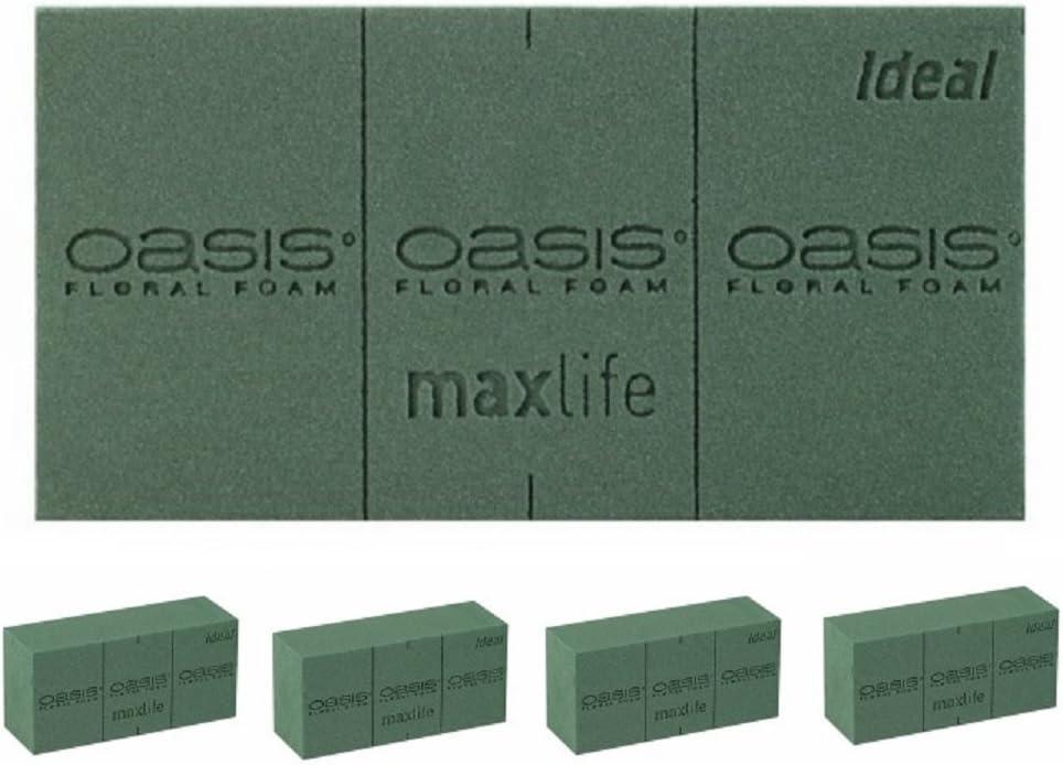Oasis 1 St IDEAL Herz 17 cm .Steckschaum f/ür Frischblumen Profi-QUALIT/ÄT f/ür Blumen