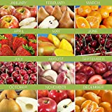 Shari's Berries - 3 Months of Harvest Select Fruit Club with Free Weekday Delivery - 1 Count - Gourmet Baked Good Gifts