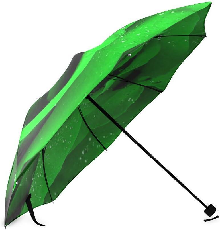 Custom Green Rose Compact Travel Windproof Rainproof Foldable Umbrella