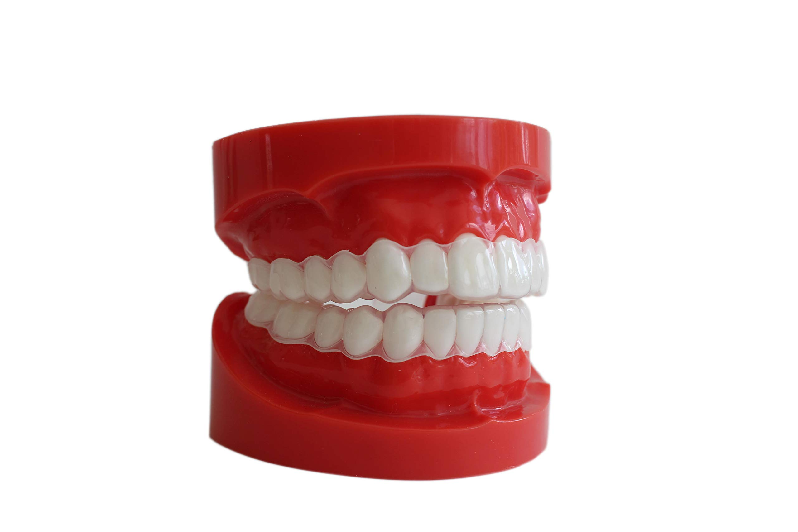 Sentinel Mouthguard Company - Teeth Guards for Tongue Biting or Cheek Biting. Upper & Lower Set