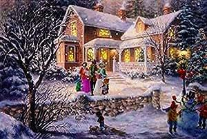 Amazon Com Lightahead 174 Christmas Tapestry Blinking Fiber