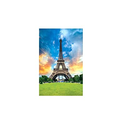 Meikosks 1000 Piece Jigsaw Puzzle Adults Puzzles Gift for Kids Famous Building - Eiffel Tower: Toys & Games