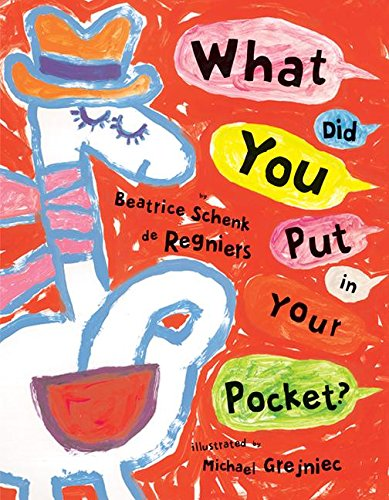 Download What Did You Put in Your Pocket? pdf epub
