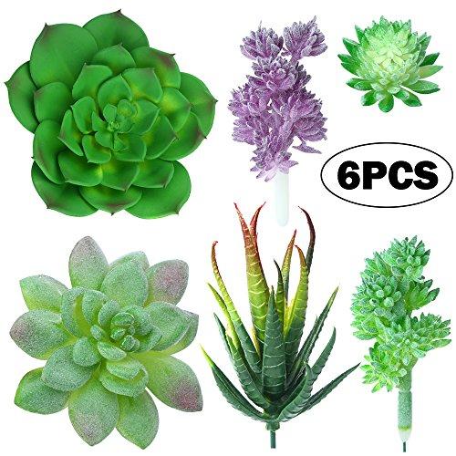 YBLNTEK Artificial Succulent Plants, Assorted Succulent Picks Fake Succulents Unpotted for Floral Arrangement Home Decoration, 6 Pieces
