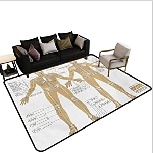Human Anatomy Area Rug Rugs Large Floor Mat Diagram of Human Skeleton System with Titled Main Parts of Body Joints Picture Print for Living Dining Dorm Playing Room Bedroom White Tan