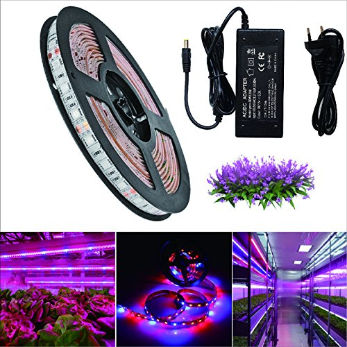 RoLightic 5M Led Pflanzenleuchte Pflanzenlampe Grow Light Aquarium Strip Streifen Wachsen Pflanzenlichter Bar Licht SMD 5050 Pflanzen 5: 1 with DC 12V 5A Netzteil (5M Led Streifen + 12V Netzteil)