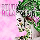 Study Relaxation - Music for Work, Music for the Classroom, Instrumental Study Music, Calming Music for Reading, Exam Study, Concentration, Classical Anti Stress Music for Studying and Focus