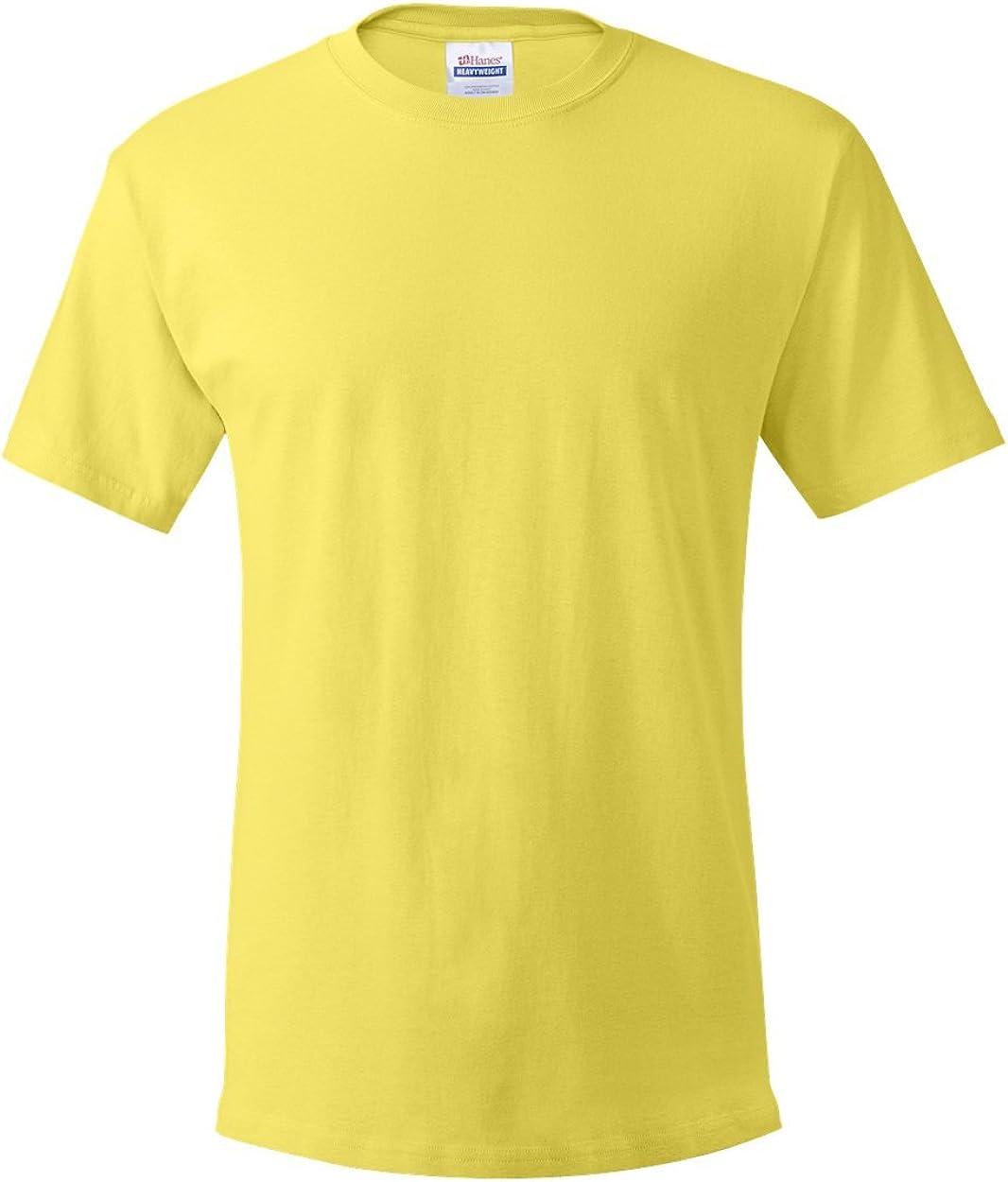 Hanes 5.2 oz. Cotton T-Shirt (5280)