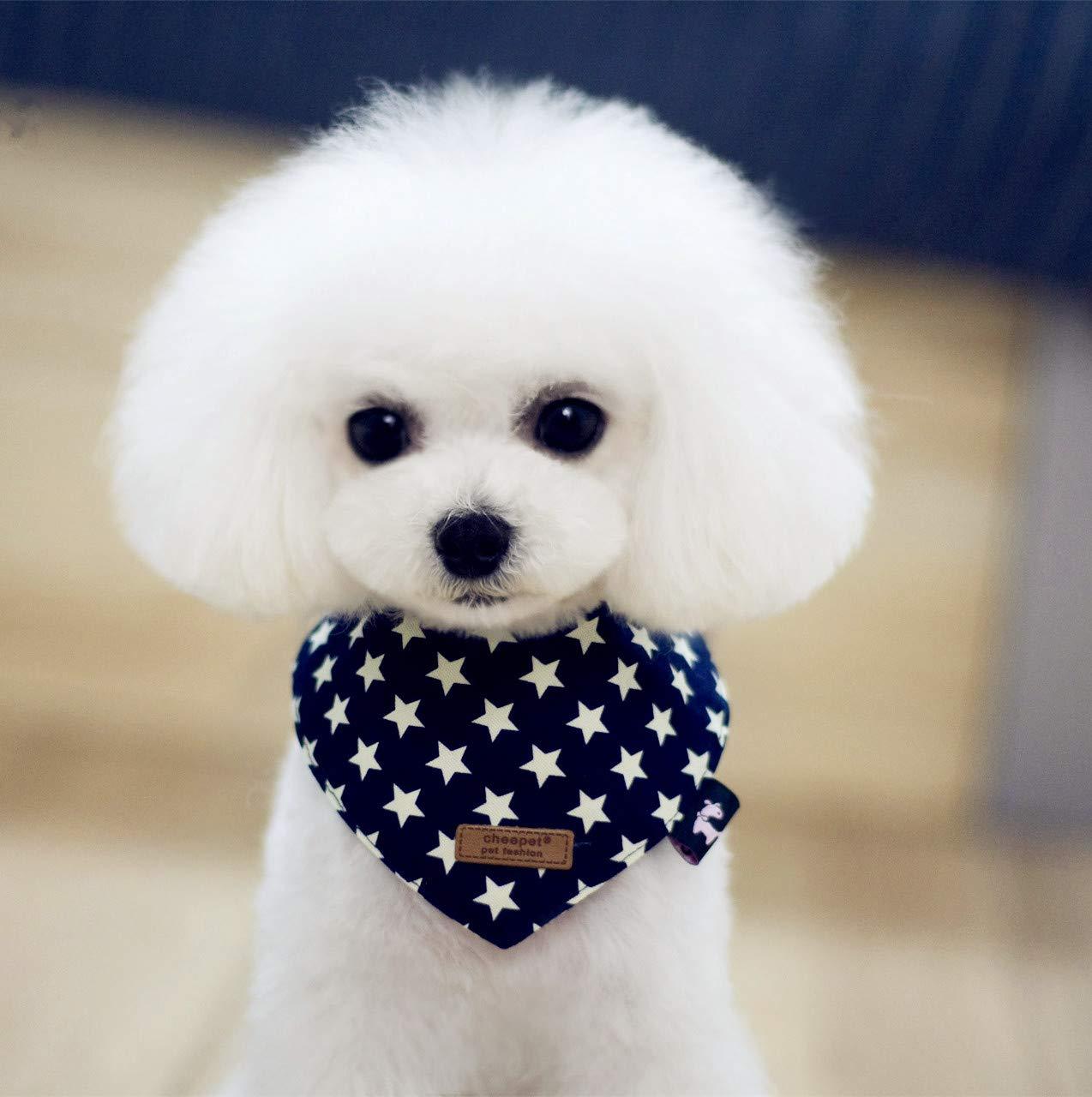 Petilleur - Bandana para Perros y Gatos (2 Unidades, Ajustable): Amazon.es: Productos para mascotas