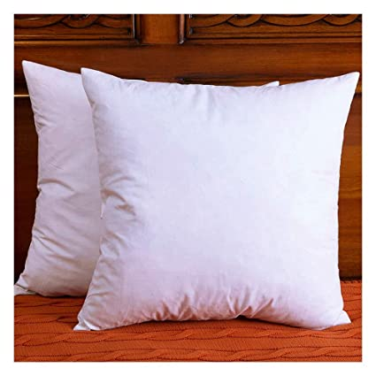 Amazon Set Of 40 Cotton Fabric Throw Pillows Insert Down And Simple Down And Feather Pillow Inserts