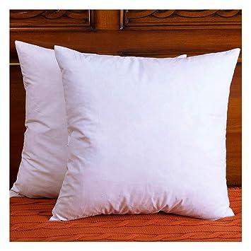 Amazon.com: Conjunto de 2 almohadas de plumas y plumones ...