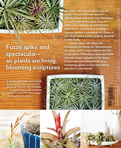 Air Plants: The Curious World of Tillandsias by Workman Publishing/Timber Press (Image #1)
