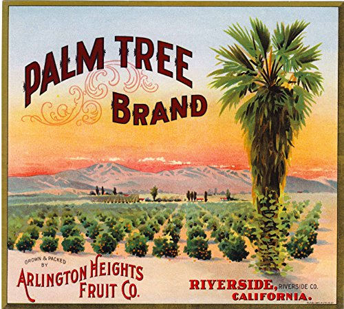 - A SLICE IN TIME Riverside Palm Tree Orange Citrus Fruit Crate Box Label Art Print