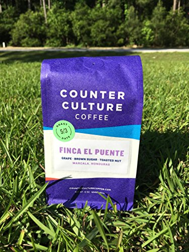 Counter Culture Coffee Finca El Puente Roast Whole Bean 12oz Bag