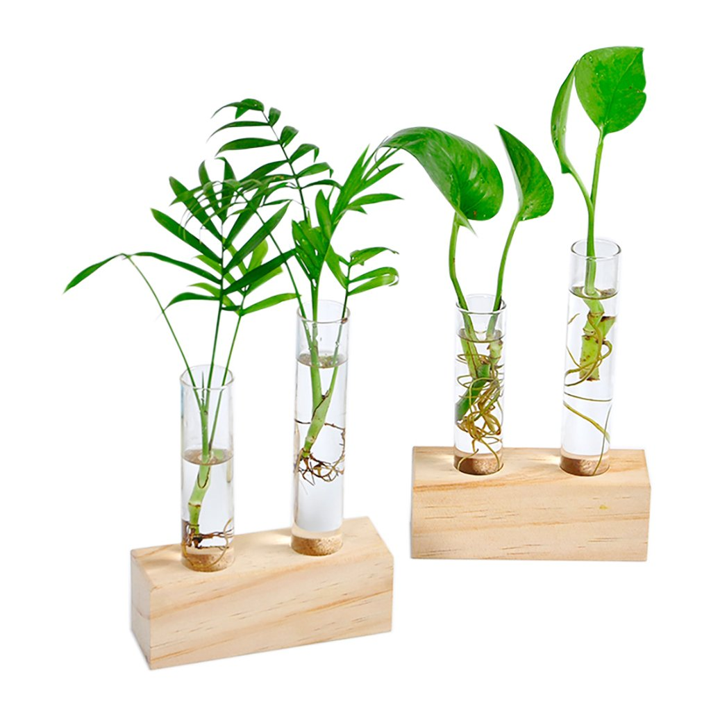Ivolador Crystal Glass Double Test Tube Vase in Wooden Stand Flower Pots for Hydroponic Plants Office Home Decoration by Ivolador