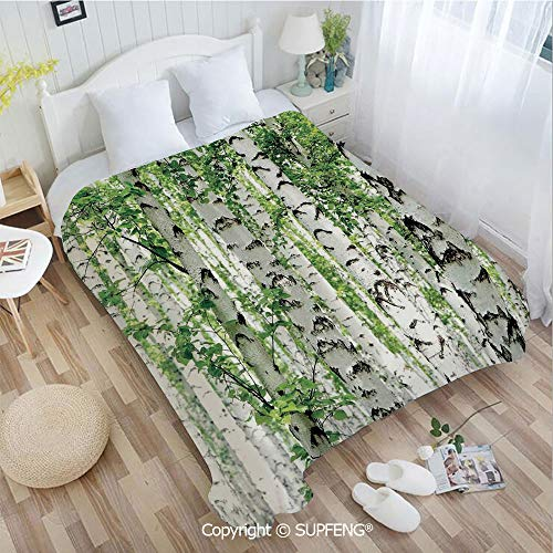 - Plush Blanket Birch Trees in The Forest Summertime Wildlife Nature Themed Decorating Picture(W59xL78.7 inch) Easy Care Machine Wash for Bedroom/Living Room/Camping etc