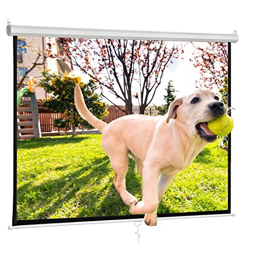 F2C Office Video Projector Projection Screen 119'' Diagonal 84''X 84'' 1:1 Format HD Display 160° Viewing Range Portable Manual Pull Down Screen Home Movie Theater Presentation Indoor Outdoor by F2C