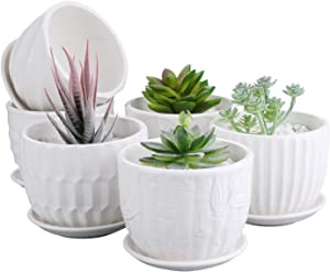 Flower Pots, Brajttt 4 Inch Cylinder Ceramic Plant Pots with Connected Saucer, Mini Ceramic Planters for Succuelnt and Little Snake Plants (6 Pack, White)