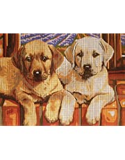"Needlepoint Kit Labradors 9""x11.8"" 23x30cm Printed Canvas cod K19"