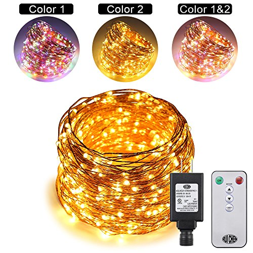 Dual Color Led Light String in Florida - 6