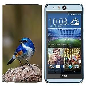 EJOOY---Cubierta de la caja de protección para la piel dura ** HTC Desire Eye M910x ** --azul pájaro cantor azul de primavera verde de la naturaleza