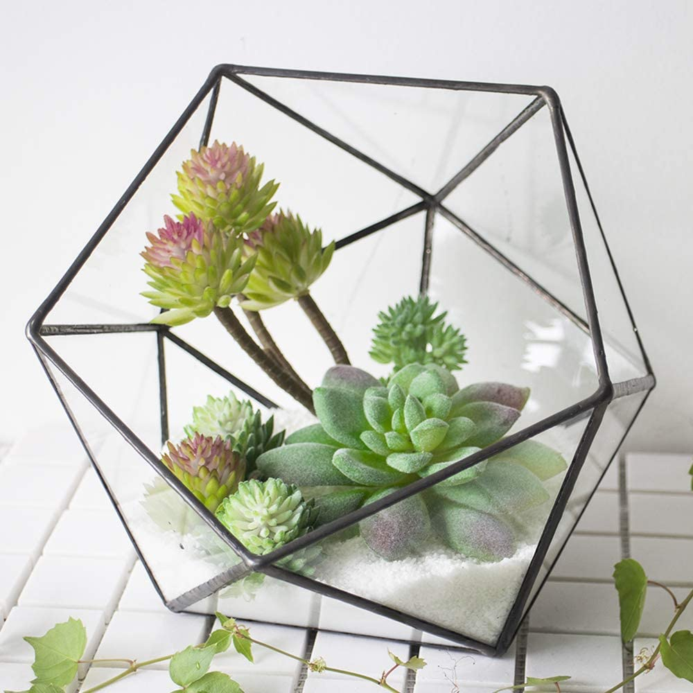 Ferrisland Geometric Terrarium Clear Glass Tabletop Planter Air Plant Candle Holder Display for Succulent Fern Moss Miniature Outdoor Fairy Garden DIY Gift