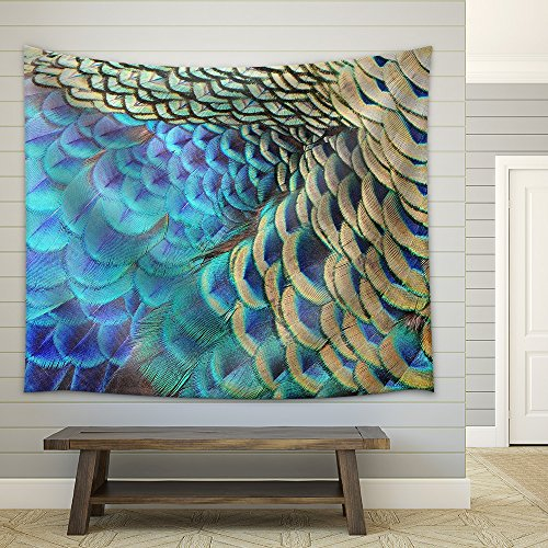 Beautiful Green Peacock Feathers Texture Abstract Background Fabric Wall