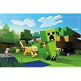 Minecraft Poster Ocelot Chase (91,5cm x 61cm) + 1 Traumstrand Poster Insel Bora Bora zusätzlich
