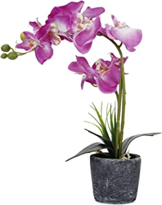 LIVILAN Purple Silk Artificial Orchid Arrangements with Flower Pot Fake Flowers for Wedding Party Dinning Table Centerpiece Decor Vivid Realistic