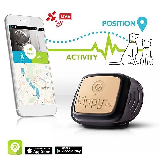 161 opinioni per Il GPS per cani e gatti di Kippy |GPS Tracker e Activity monitor per cani, gatti
