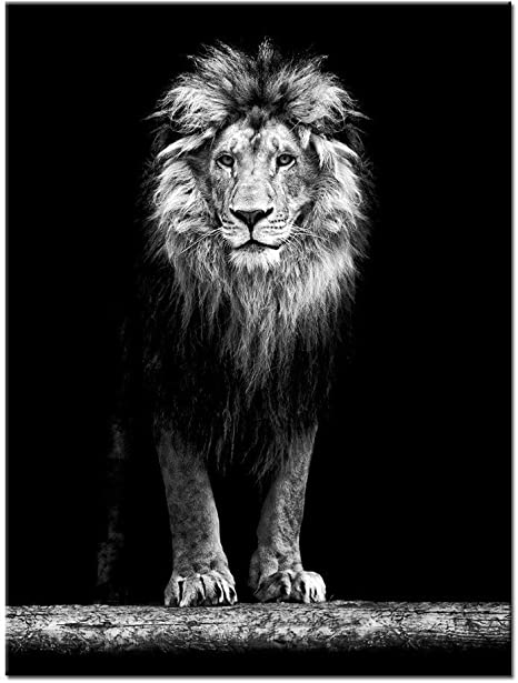 Levvarts Lion Canvas Print Portrait Of Beautiful Lion In The Dark Wall Art Stretched Wood Frame Black And White Animal Canvas Pictures For Living Room Decoration Ready To Hang Everything Else