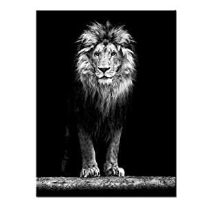 LevvArts - Lion Canvas Print,Portrait of Beautiful Lion in The Dark Wall Art Stretched Wood Frame,Black and White Animal Canvas Pictures for Living Room Decoration,Ready to Hang