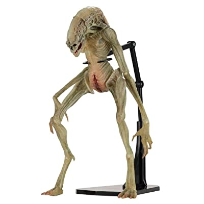 "NECAA 51654 Aliens 7"" Scale Action Figure Deluxe Alien Resurrection Newborn, Multicolor: Toys & Games"