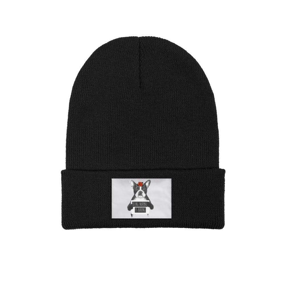 Headwear for Mens Womens Soft Solid Color Skate Dinosaurs Happy Time Knit Beanie