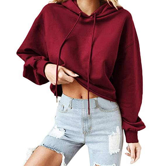 Dylanlla Womens Hoodie Sweatshirts Long Sleeve Solid Color Lumbar Tops Pullover T Shirt Blouse at Amazon Womens Clothing store: